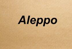 ما اسم مدينة حلب بالانجليزي؟