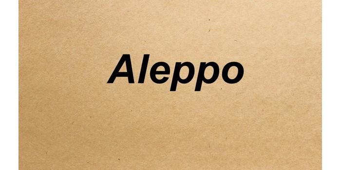 اسم مدينة حلب بالانجليزي