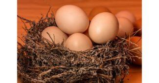 كم من الوقت يستغرق سلق البيض