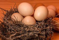 ما هي الفيتامينات الموجودة في البيض؟