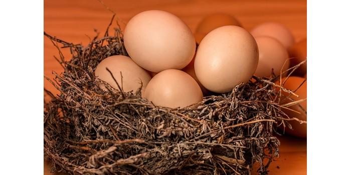 الفيتامينات الموجودة في البيض