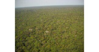 اين توجد غابة الامازون؟