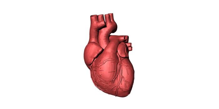 اين حدثت اول عملية زراعة قلب طبيعية