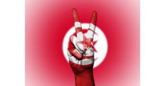 ماذا تسمى ثورة تونس ؟