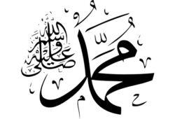 ما اسم جدة الرسول محمد؟