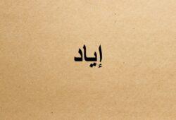 ما معنى اسم اياد؟