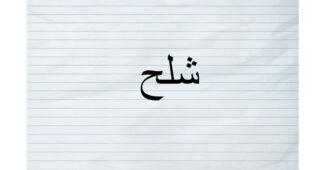 ما معنى شلح بالمغربي؟
